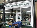 Chichester Dog Rescue Charity Shop in London Road - geograph.org.uk - 770811.jpg