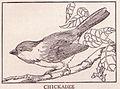 Chickadee page 577.jpg