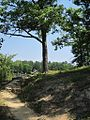 Chickasaw State Park Chester County TN 028.jpg
