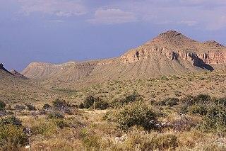Chihuahuan Desert desert