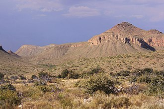 Chihuahuan Desert - The Chihuahuan Desert in West Texas