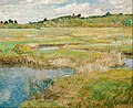 Childe Hassam - The Concord Meadow - Google Art Project.jpg