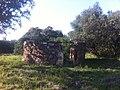 Choça em Ruinas - panoramio.jpg