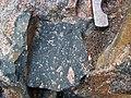 Clast-rich impact pseudotachylite (Sudbury Breccia, Paleoproterozoic, 1.85 Ga; Windy Lake Northwest roadcut, Sudbury Impact Structure, Ontario, Canada) 50 (32814565357).jpg