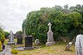 Clonkeenkerrill Friary Church and South Transept 2009 09 16.jpg