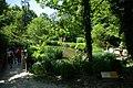 Clos Lucé - Jardin de Léonard 1.jpg