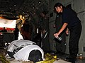 Coast Guard Aircrew Transports Manatee to Florida DVIDS218076.jpg