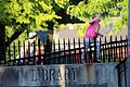 Cohoes Public Library fence.jpg