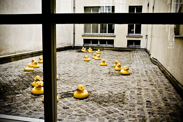 rubber ducks in courtyard