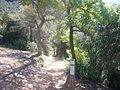 Collet de Guirló (Montserrat).JPG