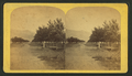 Colorado Springs, by Nims, F. A. (Franklin A.).png