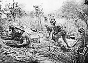 Commandos from the Australian 2-3rd Independent Company take up positions in weapon pits during an attack on Timbered Knoll, north of Orodubi (between Mubo and Salamaua), New Guinea