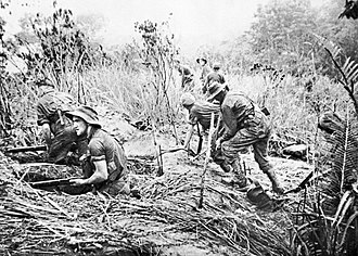 Salamaua–Lae campaign - 29 July 1943. Commandos from the Australian 2/3rd Independent Company take up position in weapon pits during an attack on Timbered Knoll, north of Orodubi, between Mubo and Salamaua. (A still from the film Assault on Salamaua by Damien Parer)