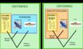 Comparaison classification.png