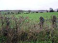 Corranarry Townland - geograph.org.uk - 1611740.jpg