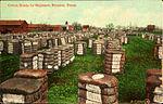 Cotton Ready for Shipment, Houston, Texas.jpg