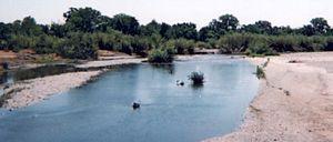 Cottonwood Creek (Sacramento River tributary) - Image: Cottonwood creek