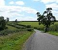 Country road south of Hungarton - geograph.org.uk - 518737.jpg