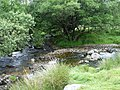 Cowsic River joins the West Dart - geograph.org.uk - 196383.jpg