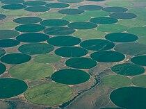 Crop circles along the Columbia, Washington, USA.jpg