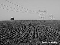 Crossed Lines (195398557).jpeg