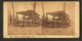 Culinary art in Camp, 43rd Reg. N.Y. Volunteers, by Bierstadt Brothers.png