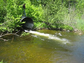 Structure that allows the passage of water or organisms under an obstruction