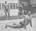 Dand, Dunde, Hindu push-up.jpg