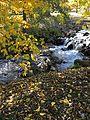 DeKalb Nature Trail 07.jpg