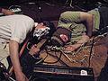 Dead Air Fresheners 36A.jpg