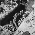 Dead Japanese in pillbox on Engebi Island - NARA - 520719.tif
