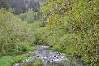 Deadwood Creek (Oregon)