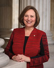Deb Fischer, official portrait, 115th Congress.jpg