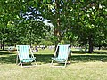 Deckchairs, St James's Park, London SW1 - geograph.org.uk - 1408583.jpg