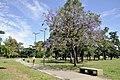 DefPuebloCABA - Barrio Parque Saavedra (1).jpg