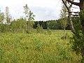Degučių sen., Lithuania - panoramio (189).jpg