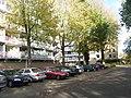Delft - panoramio - StevenL (115).jpg