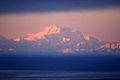 Denali seen from Anchorage.JPG
