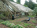 Derelict greenhouse, Walled Garden, Trevarno - geograph.org.uk - 222563.jpg