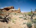 Desert southwest LCCN2011630118.tif