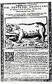 Dionysio Alberti Dente del Hipopotamo 1625.jpg
