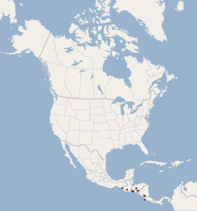 Distribution of Rhogeessa bickhami.png