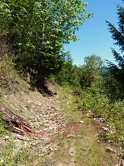 Photograph of a trail travelling laterally along a steep mountain side, paralleling a shallow, weathered trench.