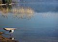 Dojran Lake 265.jpg