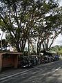 Doloeres,Quezonjf9918 07.JPG