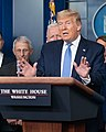 Donald Trump with Anthony Fauci in 2020 during White House Press Briefing (49666120807) (cropped).jpg