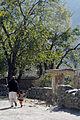 Downtown Asmar DVIDS225503.jpg
