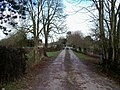 Driveway to the mill - geograph.org.uk - 1716365.jpg