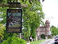 Duke of Wellington Pub Sign - geograph.org.uk - 438849.jpg
