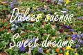 Dulces sueños. Sweet dreams (RPS 31-10-2009).png